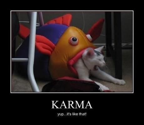 Karma Is Like That Cat
