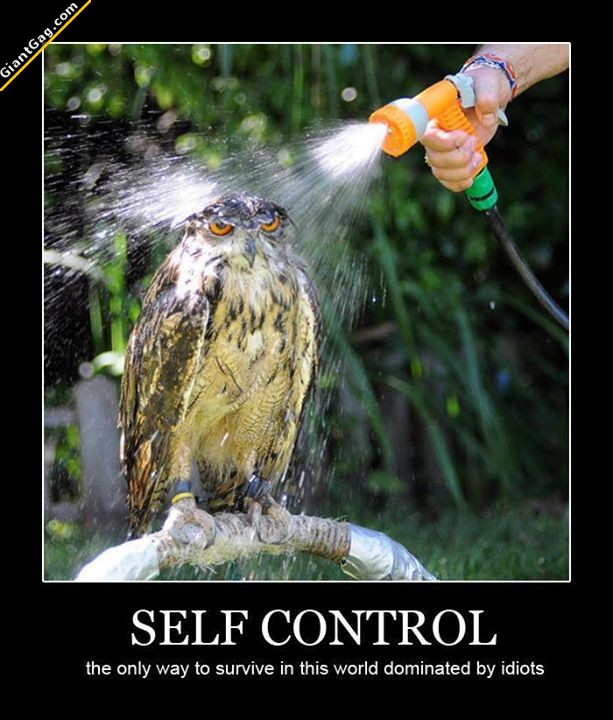Self Control, The Only Way To Survive ..